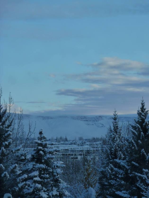Photo from this morning by Hanna Adelheid