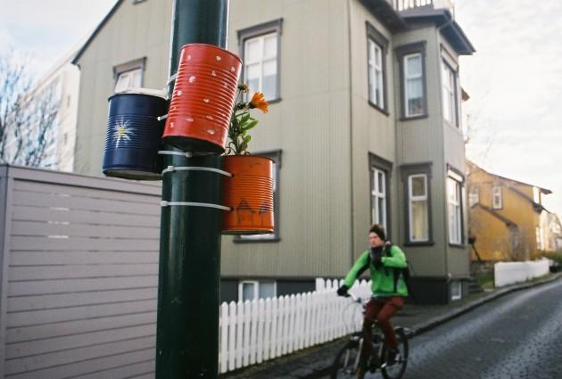 Street art- Reykjavik, Iceland