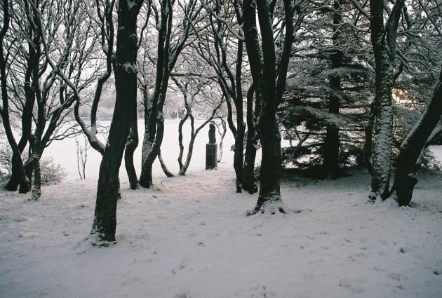 A snowy dawn in Reykjavik, Iceland