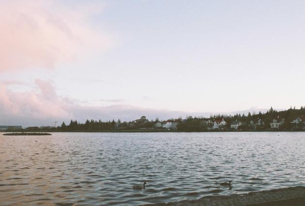 Tjörnin in Reykjavik, Iceland